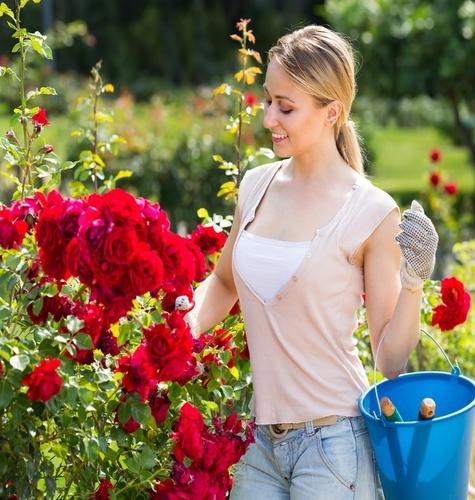 Vrtlarenje – provjeren put do boljeg zdravlja